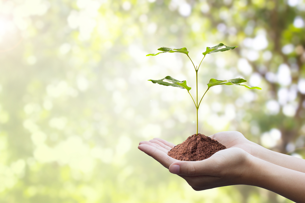 Growing with Purpose and Why it Matters
